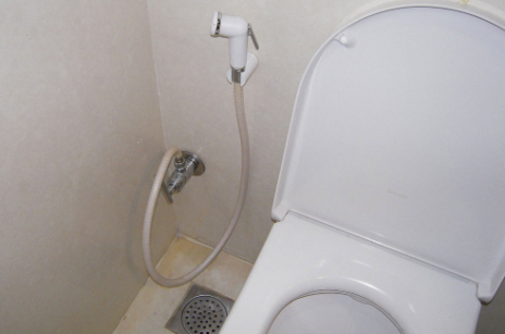 toilet with hose