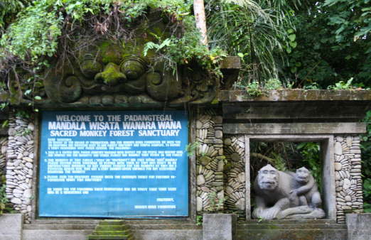 monkey forest sign